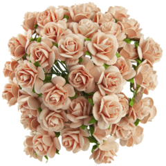 Open roses - peach mulberry paper roses - 10 mm - 50 flowers