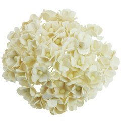 Sweetheart blossom flowers - ivory - 15 mm - 50 flowers