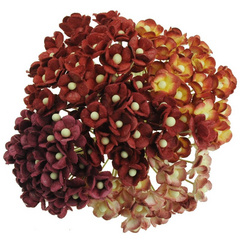 Miniature mixed red sweetheart blossom flowers - 10 mm - 100 flowers