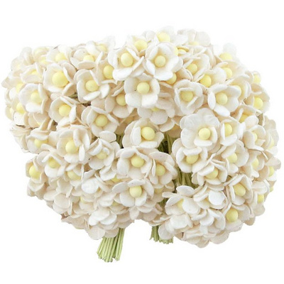 100 MINIATURE WHITE SWEETHEART BLOSSOM FLOWERS